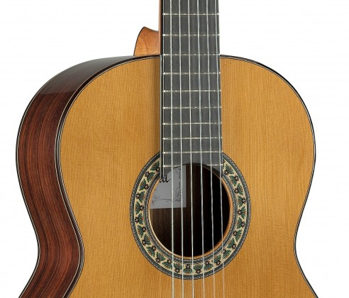 Semi-professional range, guitars for each guitarist