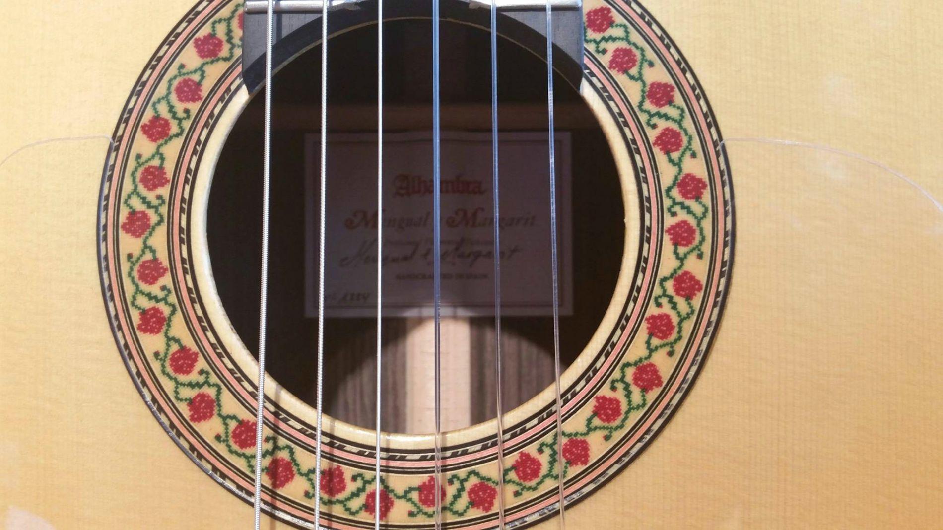 Profile guitars history